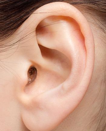EARasers Dentists & Hygienists Hi-Fi Earplugs