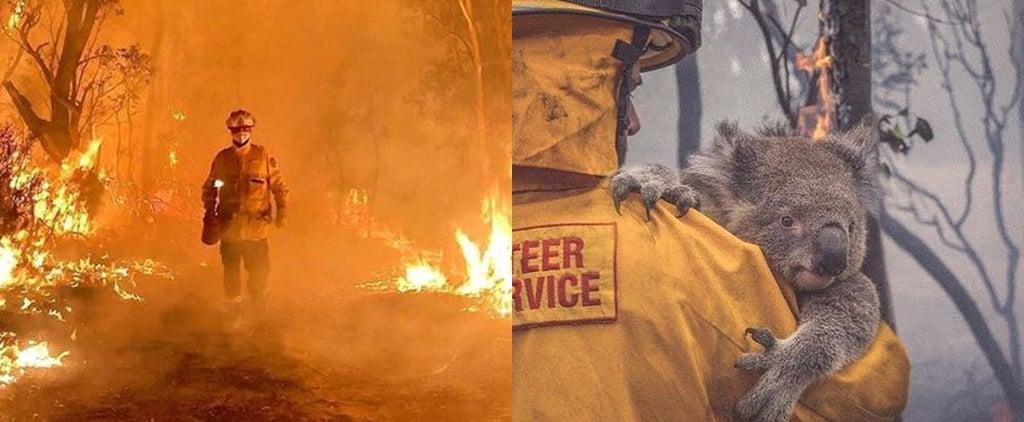 Sleep and Sound Australian Bushfire Relief Pledge