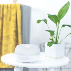 cran humidifier on table